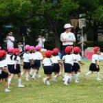 幼稚園の運動会で子どもが完食するお弁当4つの盛り付け方!